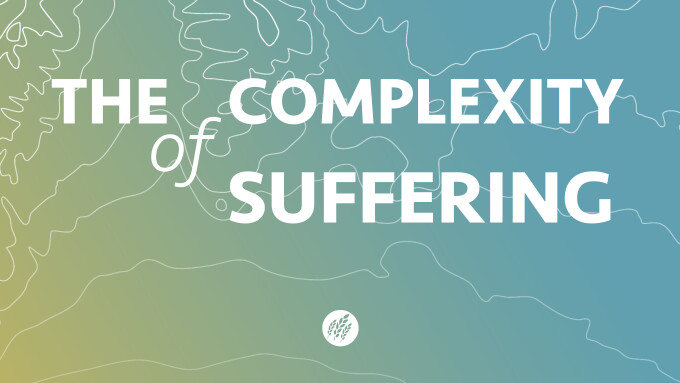 The Complexity of Suffering